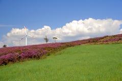 eolic energi Arkivbild