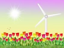 Eolic in tulips field. Illustration of eolic in tulips field Stock Photos