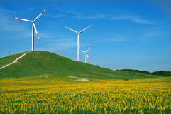 Eolic windmill. Eolic energy field with windmills Royalty Free Stock Photos