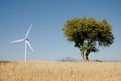 Eoliche della turbina, in sud Italia Fotografia Stock
