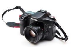Eos 50d de Canon Foto de Stock