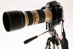 EOS 5d MkII di Canon Immagini Stock Libere da Diritti