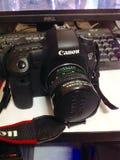 EOS 6D照相机 库存图片