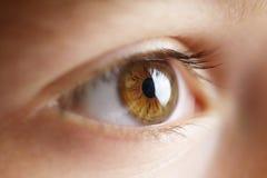 стрельба макроса глаза eos камеры 20d людская Стоковые Фотографии RF