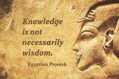 EP da sabedoria do conhecimento imagens de stock royalty free