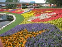 epcot κήπος λουλουδιών φεστιβάλ Στοκ Εικόνες