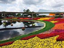 epcot κήπος λουλουδιών φεστιβάλ Στοκ φωτογραφίες με δικαίωμα ελεύθερης χρήσης