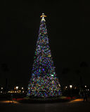 Epcot Christmas Tree. Stock Photo