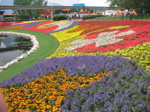 Epcot Flower and Garden Festival Stock Images