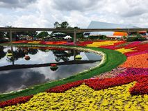 Epcot Flower and Garden Festival royalty free stock photos