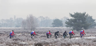 EPE, THE NETHERLANDS - MARCH 5, 2016: Cyclists under winter skie. S on a training ride in order to regain the fitness lost over the holidays Stock Image