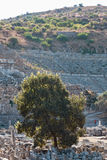 Ephesus Photo stock
