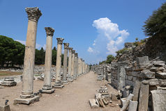 Ephesus Agora Columns Royalty Free Stock Photo