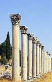 Ephesus colonnade Royalty Free Stock Photography
