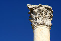 Ephesus column Royalty Free Stock Photos