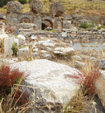 Ephesus in der Türkei Stockbild