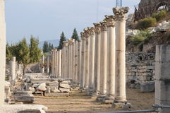 Ephesus, giardino Mediterraneo Fotografia Stock