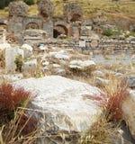 Ephesus i Turkiet Fotografering för Bildbyråer