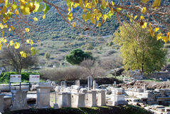Ephesus, Izmir, Turkey, Middle East Royalty Free Stock Photos