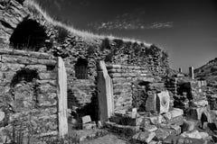 Ephesus rovina B&W immagini stock libere da diritti