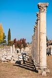 Ephesus ruins, Turkey. Ancient Roman stone columns of commercial Agora in Ephesus archaeological site, Turkey Royalty Free Stock Photos