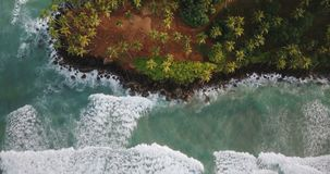 Epic aerial view of white foaming ocean waves reaching the shore with tropical island palm trees and resort houses. Epic aerial view of white foaming ocean stock video