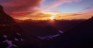 Epic Mountain Sunset Over Glacier National Park High Altitude Range of Peaks With Eagle Flying In Distance stock photography