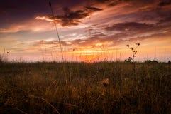 Epic Pastoral Landscape Evening Royalty Free Stock Image