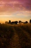 Epic Pastoral Landscape Sunset Royalty Free Stock Image