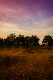 Epic Pastoral Landscape Sunset Stock Images