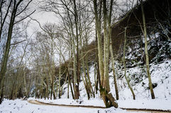 Epic Pastoral Winter Landscape. Epic and beautiful natural landscape in the season of winter with lots of natural details from diversity of vegetation to walking Royalty Free Stock Image
