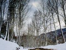 Epic Pastoral Winter Landscape Stock Images