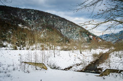 Epic Pastoral Winter Landscape. Epic and beautiful natural landscape in the season of winter with lots of natural details from diversity of vegetation to walking Stock Photography