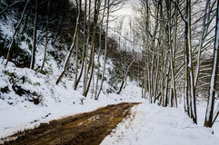 Epic Pastoral Winter Landscape Royalty Free Stock Photography