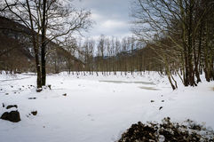 Epic Pastoral Winter Landscape. Epic and beautiful natural landscape in the season of winter with lots of natural details from diversity of vegetation to walking Royalty Free Stock Photo