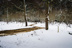 Epic Pastoral Winter Landscape Royalty Free Stock Photo