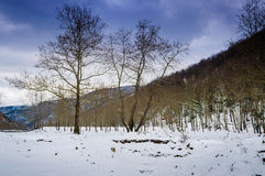 Epic Pastoral Winter Landscape Royalty Free Stock Images