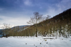 Epic Pastoral Winter Landscape. Epic and beautiful natural landscape in the season of winter with lots of natural details from diversity of vegetation to walking Royalty Free Stock Photography