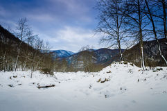 Epic Pastoral Winter Landscape. Epic and beautiful natural landscape in the season of winter with lots of natural details from diversity of vegetation to walking Stock Photo