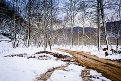 Epic Pastoral Winter Landscape Stock Photography