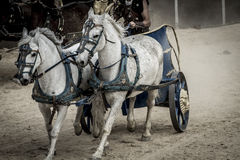 Epic, Roman chariot in a fight of gladiators, bloody circus Stock Photo