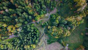 Forest from above Royalty Free Stock Images