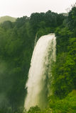 Epic waterfall and green vegetation Stock Photos