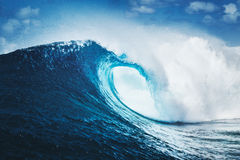 Epic Waves, Perfect Surf