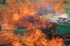 在种田的蜂的Epidemy -毁坏的蜂箱 免版税库存照片