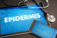 Epidermis (cutaneous disease related) diagnosis medical concept. On tablet screen with stethoscope royalty free stock photos