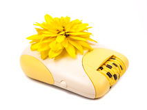 Epilator and yellow flower Stock Images