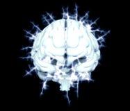 Electrical brain Concept Stock Photos