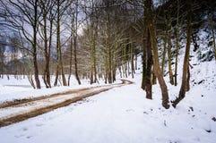 Epische Hirtenwinter-Landschaft Stockfotografie