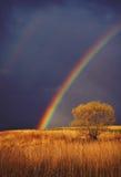 Epischer Sonnenuntergangregenbogen Stockfoto